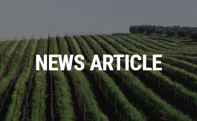 Generic News 10